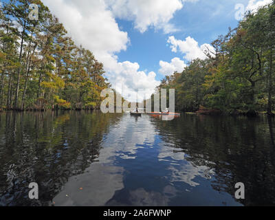 Fisheating Creek, Florida - September 22, 2018: Two kayakers amidst clouds and cypress trees reflected in the calm water of the creek in autumn. - Stock Photo