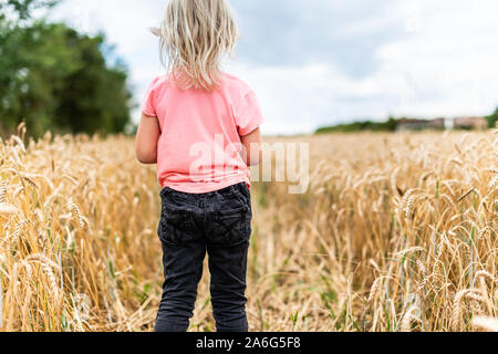 A cute little blonde girl walking through a cornfield, wheat field in the beautiful countryside - Stock Photo