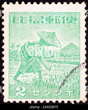 Woman harvesting rice on old stamp of Philippines - Stock Photo