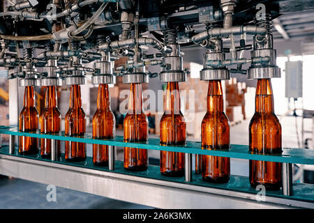 Beer bottles filling on the conveyor belt in the brewery factory - Stock Photo
