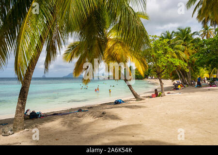 Anse Figuier, Martinique, France - 14 August 2019: Anse Figuier Tropical Beach in Martinique - Stock Photo