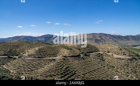 Terraces of grape vines for port wine production line the hillsides of the Douro valley at Barca de Alva in Portugal - Stock Photo