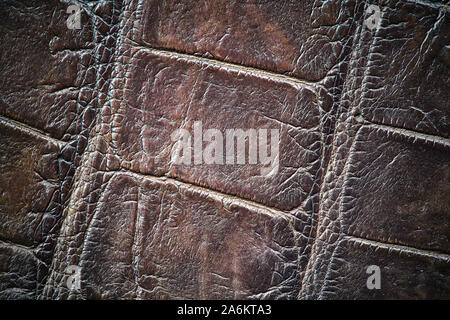 Brown crocodile skin, natural texture closeup, abstract background,