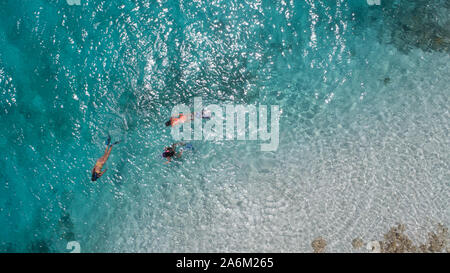 Three young girls snorkeling in blue waters above coral reef  in tropical Caribbean sapphire crystal clear calm waters  People and lifestyle concept - Stock Photo