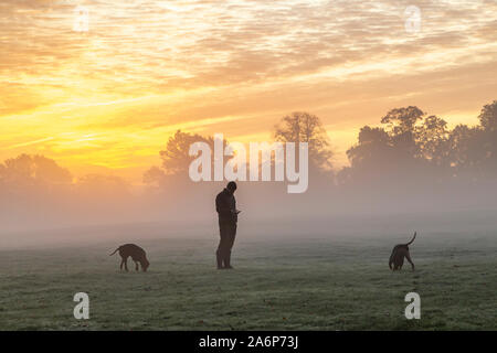 Northampton, UK. 28th Oct, 2019. UK Weather, A man stood using his mobile phone while walking his Hungarian Vizla pets with a spectacular dawn sky behind him over Abington Park a ground mist and a light frost promising another nice day, Credit: Keith J Smith./Alamy Live News - Stock Photo