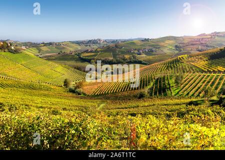 Langhe vineyards of Barbaresco in autumn, Piedmont, Italy.