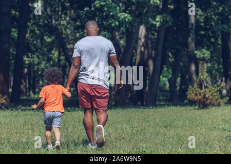 back view of african american father and son holding hands while walking in park