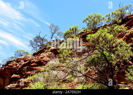 Australian desert, Kings Canyon, Northern Territory in Australia - Stock Photo