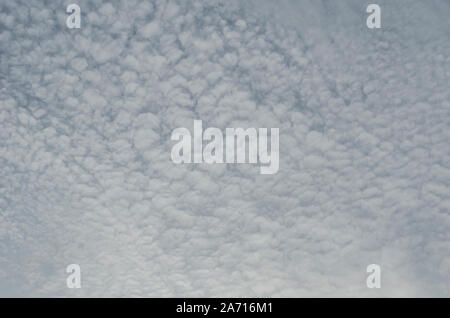 Stratocumulus Clouds - Stock Photo