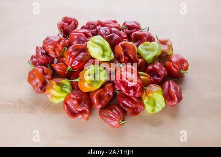 Red Hot Chilli pepper Scotch Bonnet Caribbean Antillais on wooden background colourful - Stock Photo