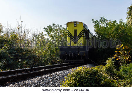 Freight train hauled by yellow diesel locomotives passing the plants next to the railroad - Stock Photo