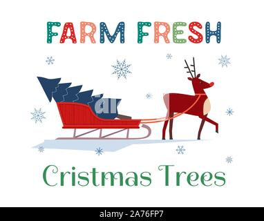 Farm fresh Christmas trees flat color vector poster. Winter holidays hand drawn cartoon. Cute comic reindeer transport Christmas tree on sleigh. Fun b - Stock Photo