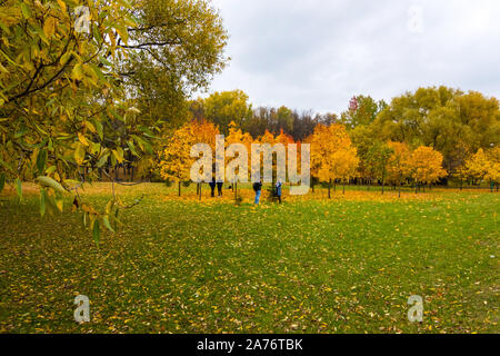 Scenic view of the city park with multicolored fall foliage in downtown Minsk, Belarus