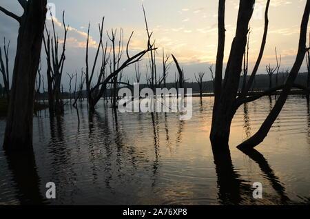 tidal surge, flood zone - Stock Photo