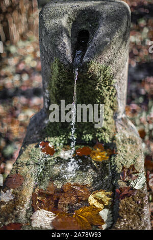 A wishing well in the middle of autumn in Germany. - Stock Photo