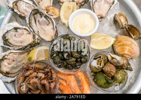 Cafe Turino , Seafood platter, Place Garibaldi, Nice - France, Cote d' Azur France Nice- France Alpes Maritimes - Stock Photo