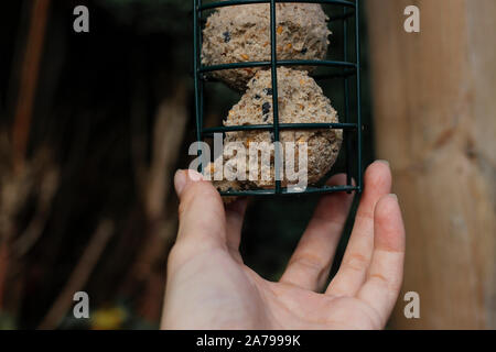 Woman's holding bird seed feeder.Garden wild bird feeder - Stock Photo