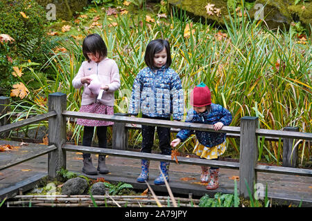 Young children at a fish pond among the Maple trees and other exotic deciduous trees turning yellow and red in the world famous Japanese Gardens in Po - Stock Photo