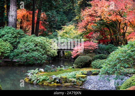 Maple trees and other exotic deciduous trees turning yellow and red in the world famous Japanese Gardens in Portland, Oregon, in Autumn. - Stock Photo