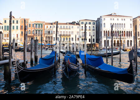 Blue covered gondolas, moored between traditional poles on the Grand Canal, Venice with a backdrop of traditional buildings. - Stock Photo