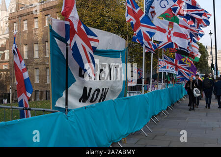 London,UK 31 October 2019. Pro Brexit flags at protest opposite parliament - Stock Photo