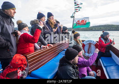 Dolphin watching,boat,Cardigan Bay,NewQuay,New Quay,Newquay,a,popular,fishing,coastal,village,town,popular,for,boat,trips,West Wales,Wales,Welsh,UK,GB - Stock Photo