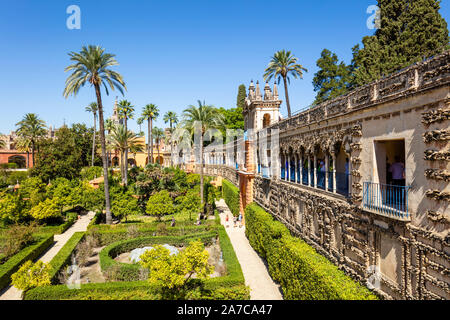 Galería de Grutesco and the Portal of the Privilege in the Gardens of the Real Alcazar palace Seville Spain Seville Andalusia Spain EU Europe - Stock Photo
