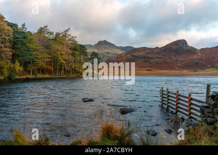 Beautiful and moody morning fall light at Blea Tarn in the English Lake District with views of the Langdale Pikes, and Side Pike during autumn.
