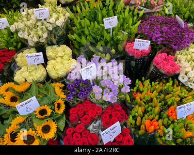 Flower Market in Amsterdam. It is the only floating flower market in the world, and one of the most fragrant places of interest of Amsterdam - in all - Stock Photo