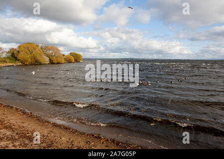 sandy beach at ballyronan on the shores of lough neagh County Derry Northern Ireland - Stock Photo