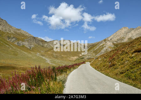 Scenic view of an Alpine landscape with a mountain road between pastures leading to Colle dell'Agnello pass in late summer, Chianale, Piedmont, Italy - Stock Photo