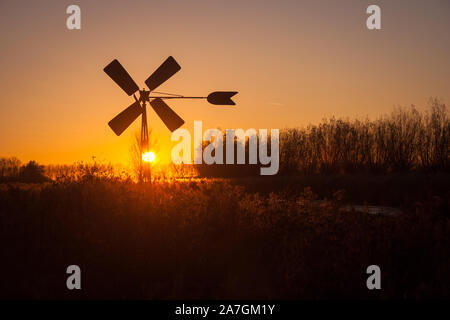 Dutch pumping windmill is silhouetted against the evening sky. Reeds are illuminated by the setting sun. - Stock Photo