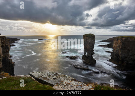Yesnaby Castle sea stack, Yesnaby, Mainland, Orkney, Scotland - Stock Photo