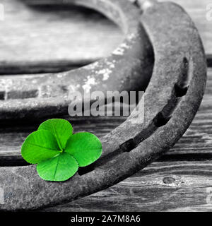 Horseshoe with lucky clover on wood background - Stock Photo