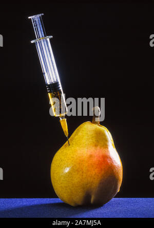 Gene manipulation, syringe in a pear - Stock Photo