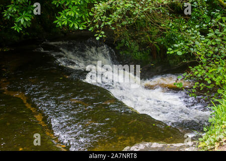 23 August 2019. The small fast running river at the Glencar waterfall site in County Sligo The glen is a favourite place for country walks. - Stock Photo
