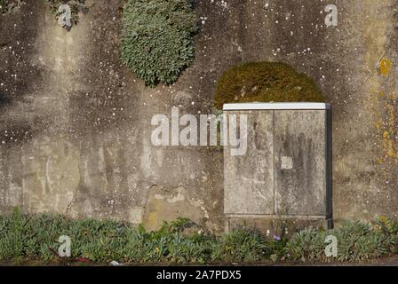 Electric distribution box, blending in with the wall in background - Stock Photo
