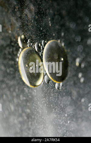 Colorful bubbles macro background fifty megapixels high quality - Stock Photo