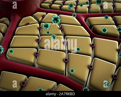 virus attack the liver, liver cells, liver disease, structure of the liver - Stock Photo