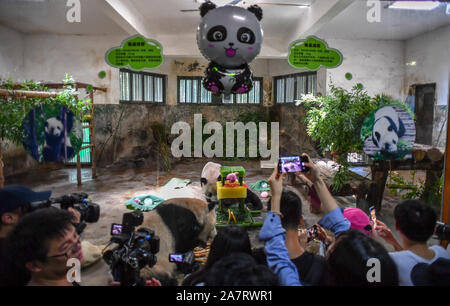 Visitors take pictures or videos of giant panda brothers Chengjiu and Shuanghao while they enjoy bamboo shoots and ice cakes during a celebration for - Stock Photo