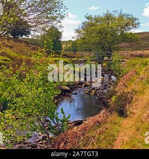 Footbridge over Wheeldale Gill stream on the North York Moors, Yorkshire, England, UK - Stock Photo