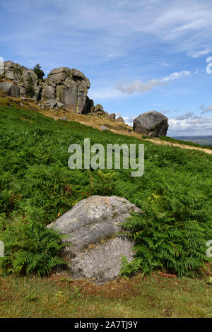 Scenic rural landscape of summer sunlight on high rocky outcrop, bracken & blue sky - Cow and Calf Rocks, Ilkley Moor, West Yorkshire, England, UK. - Stock Photo