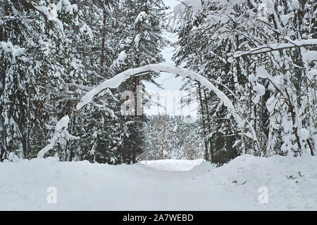 Scenic view of snowy winter forest with natural arch from wood trunk - Stock Photo