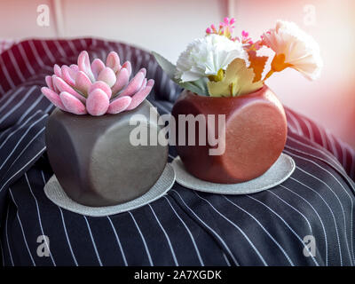 Pink succulent plant and flowers in modern geometric concrete planters on black fabric background. Beautiful painted concrete pots. - Stock Photo
