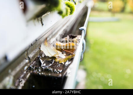 Rainwater gutter cleaning concept, lot of autumn leaves in metal gutter. - Stock Photo