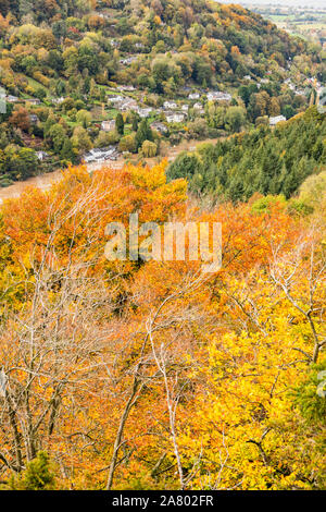 Symonds Yat West in the Wye Valley in autumn viewed from Symonds Yat Rock, Herefordshire UK - The River Wye is in flood due to heavy rain in Wales. - Stock Photo