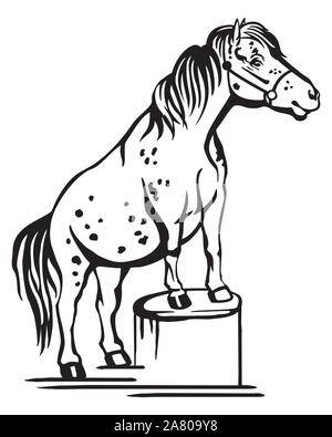 Monochrome decorative portrait of pony standing in profile on a stump, training pony. Vector isolated illustration in black color on white background. - Stock Photo