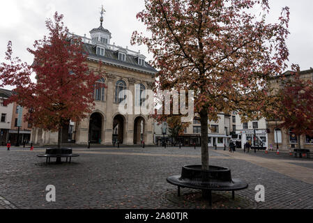 Young trees with Autumn leaves in Market Place in front of the Abingdon County Hall Museum in Abingdon-on-Thames, a historic market town in South Oxfo - Stock Photo
