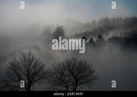 Foggy landscape, near Oberweser, Weser Uplands, Weserbergland, Hesse, Germany; - Stock Photo