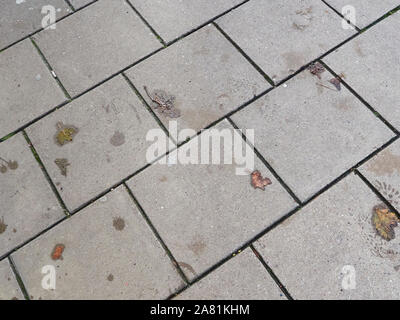 Close up of a pavement made of grey square stone slabs with a small number of autumn leaves scattered on top and wet footprints left by a boot - Stock Photo
